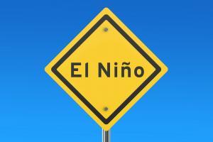 How the 2015-16 El Nino affected disease outbreaks