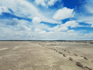 Low soil moisture posing threat in most river basins