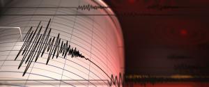 19 quakes strike Nicobar Islands within 10 hours
