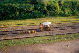 दो साल में साढ़े 10 लाख से ज्यादा ट्रेनें विलंब हुईं : आरटीआई