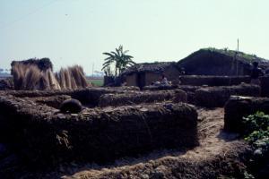 मोदी सरकार ने पांच साल में किसी झुग्गीवासी को नहीं दिया घर