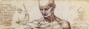 Leonardo da Vinci revisited: how a 15th century artist dissected the human machine