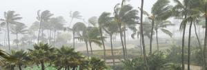 'Severe' cyclonic storm to hit Tamil Nadu on April 30