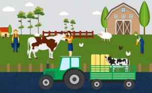 How livestock farming affects the environment