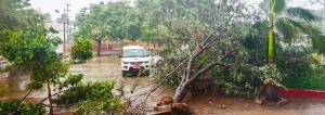 Cyclone Fani leaves Odisha in the dark, paralysed