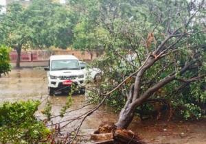 फोनी से ओडिशा में भारी नुकसान, सामान्य नहीं हो पाया जनजीवन