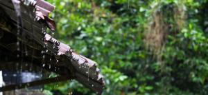 Schools need a roadmap for rainwater harvesting
