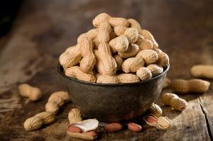 Genetic secrets of peanut varieties unveiled