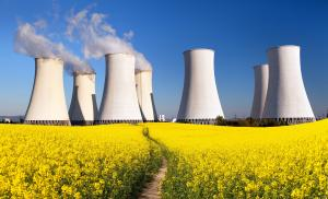 IEA pitches for favourable policy interventions to push lagging nuclear sector