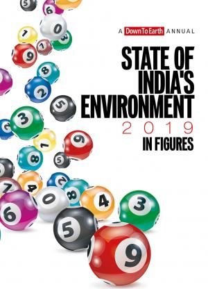 State of India's Environment 2019: In Figures (eBook)
