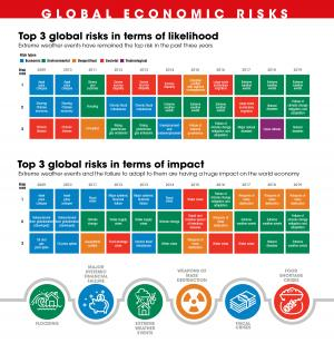 How environment became one of the top three global risks after 2010