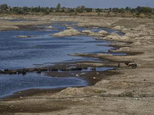 Gujarat's Phophal river, which is one of the major sources of irrigation for villages in drought-prone Saurashtra region, has dried up. Photo: Vikas Choudhary