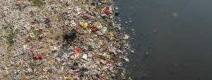 Can Ministry of Jal Shakti save Indian rivers?