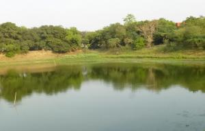 जल संरक्षण के लिए बिहार सरकार बनाएगी कानून