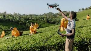 Digital solutions could be key to end hunger in Africa: Report