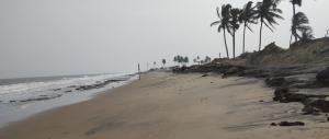 Odisha's climate refugees: Activists urge proper rehabilitation policy