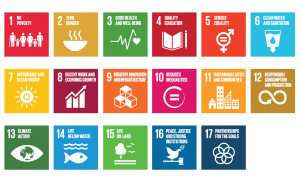 Is India ready to meet Sustainable Development Goals? CAG raises concern
