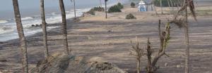 Odisha's climate refugees: Last man standing at Satabhaya
