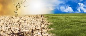 Global warming is universal, speedy and worldwide: Study