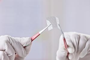 New method to fabricate graphene sheet fabricated from camphor