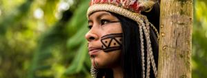 Indigenous people not given their due for conserving forests: UNCCD report