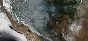 As Amazon burns BlackRock emerges as world's largest investor in deforestation
