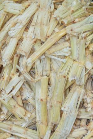 Lignin from agro waste helps make useful nanocomposites
