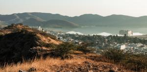India lost 31% of grasslands in a decade