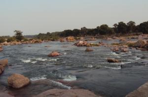 केन-बेतवा नदी जोड़ परियोजना से डूब सकते हैं जनता के 28 हजार करोड़ रुपये : सीईसी रिपोर्ट