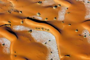 What triggers desertification in India