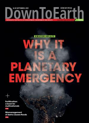 Amazone Ablaze - Why it is a planetary emergency