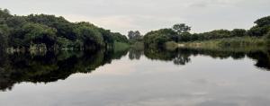 Perennial rivers turning seasonal a disturbing trend