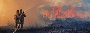 Why fires that scorched the Amazon are a planetary emergency