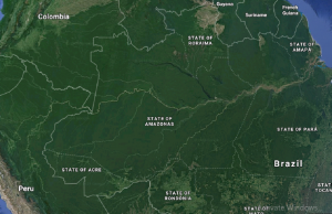 Nasa satellite imagery finds tremendous changes in Amazon in last 40 years