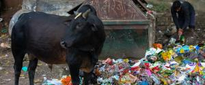 No plastic ban: What it means for India?