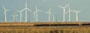 Wind to become largest power source by 2050, says Irena
