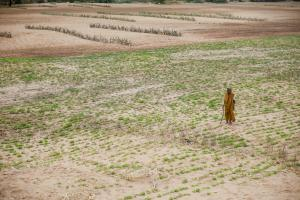 More than 10,000 farmers, farm hands committed suicide in 2017
