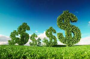 The Green Climate Fund must be a champion for real sustainability