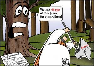 40000 trees cut for coal mine