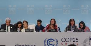 Climate Emergency CoP 25: Decent outcome on 2020 Ambition