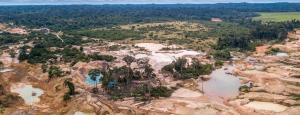 Statistic of the decade: The massive deforestation of the Amazon