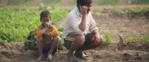 Farmers stare at another loss despite good rains. They need a boost from govt