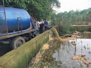Treasure in excreta: Fast-depleting phosphorus can be extracted from faecal sludge