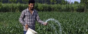 Link sanitation, solid waste to agriculture, Niti Aayog advises states