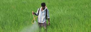 Pesticide Management Bill 2020 must address important concerns