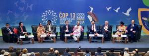 Speakers highlight importance of implementation at CMS CoP 13
