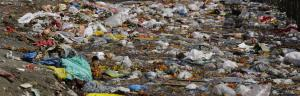 Is implementation of plastic ban in various states confined to paper?