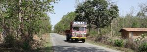 The ecological cost of highway to my village