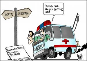 Simply Put: Hospital/Gaushala