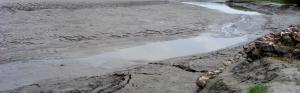 COVID-19: Bihar flood control works stalled amid lockdown